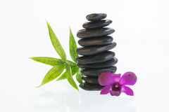 Black zen stones with Dendrobium orchid Stock Photos