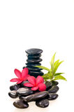 Black zen stones with red frangipani flowers Royalty Free Stock Photography