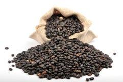 Blackbeans Imagens de Stock Royalty Free