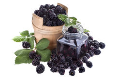 Blackberrie domestique Photographie stock