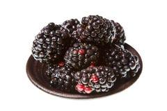 Blackberries Royalty Free Stock Image