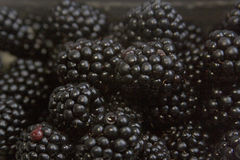 Blackberries. Fresh yummy blackberries background royalty free stock image