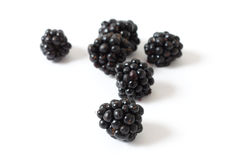 Blackberries Stock Image