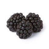 Blackberries. Ripe juicy blackberries isolated on white background Royalty Free Stock Image