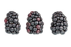 Blackberries. Over a white background Royalty Free Stock Images