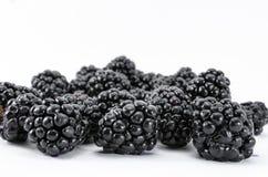 Free Blackberries Stock Photo - 43251030