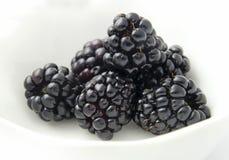 Free Blackberries Stock Photos - 50037873