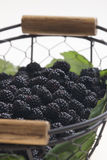Blackberries in basket Stock Photo