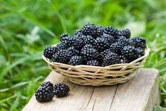 Blackberries in the basket Royalty Free Stock Image