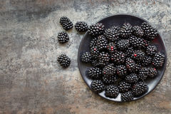 Blackberries on Black Plate over Slate Top View Stock Image