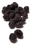 Blackberries Black Raspberries Royalty Free Stock Photography