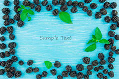 Blackberries on a blue wooden background Stock Image