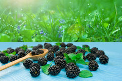 Blackberries on a blue wooden table against the background of na Royalty Free Stock Image