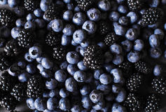 Blackberries, blueberries a gray abstract background. Stock Photos