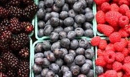 Blackberries, Blueberries, and Raspberries Royalty Free Stock Image