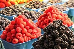 Towers of Raspberries and Blackberries in pannets. Blackberries, Blueberries, Raspberries, market, food, fruit, black, red, blue, colors, fresh royalty free stock images