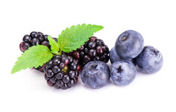 Blackberries and blueberry . Royalty Free Stock Images
