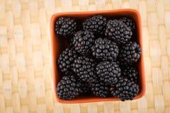 Blackberries in bowl Stock Photos
