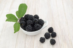 Blackberries In A Bowl. A white bowl of blackberries with some blackberries on rustic wooden white table stock image