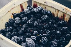 Blackberries on Brown Wooden Container Royalty Free Stock Images