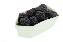 Blackberries in carton Stock Photo