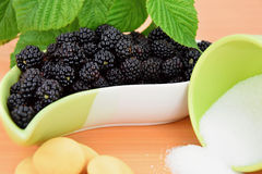 Blackberries in a ceramic bowl, biscuits and a cup of sugar spill, green plant blackberries. Stock Image