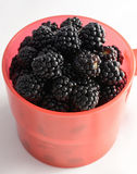 Blackberries close up Stock Photography