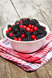 Blackberries and cranberries Royalty Free Stock Image