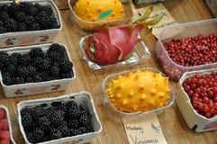 Blackberries cranberries redberries Stock Photography