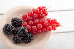 Blackberries and currants Stock Photo