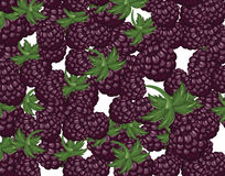 Blackberries delicious dessert background Royalty Free Stock Photo