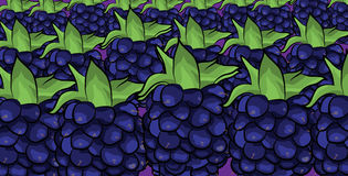 Blackberries fruit cartoon pattern Royalty Free Stock Photography