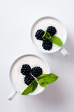 Blackberries, fruit cream dessert in two cups isolated Stock Photos