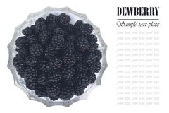 Blackberries in a glass dish isolated Royalty Free Stock Photo