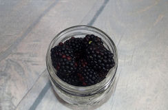 Blackberries in a glass jar. Stock Images