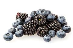 Blackberries Stock Photography