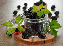 Blackberries in a jar Royalty Free Stock Images