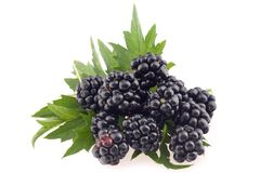 Blackberries with leaves. Stock Photography