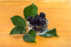Blackberries with leaves Royalty Free Stock Image