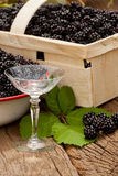 Blackberries and a liqueur glass Royalty Free Stock Photos
