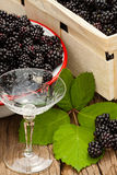 Blackberries and a liqueur glass Stock Image