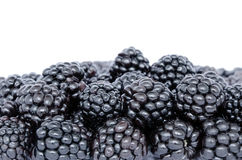 Blackberries. Macro image of a group of blackberries Stock Images
