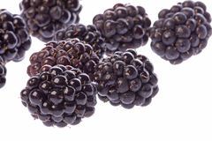 Blackberries Macro Isolated Royalty Free Stock Photo