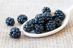 Blackberries macro shot Royalty Free Stock Image