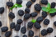 Blackberries and mint leaves on wooden background royalty free stock image