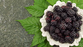 Blackberries on a plate Stock Image