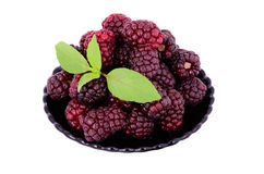 Blackberries in a plate isolated on white. Blackberries in a plate. isolated on white. decorated with green leaves Stock Image