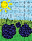 Blackberries puzzle pattern. With nature background Stock Images