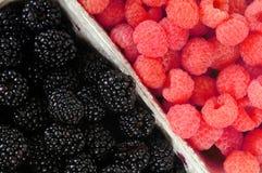 Blackberries and raspberries Royalty Free Stock Photography
