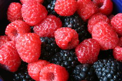 Blackberries and raspberries Royalty Free Stock Photo